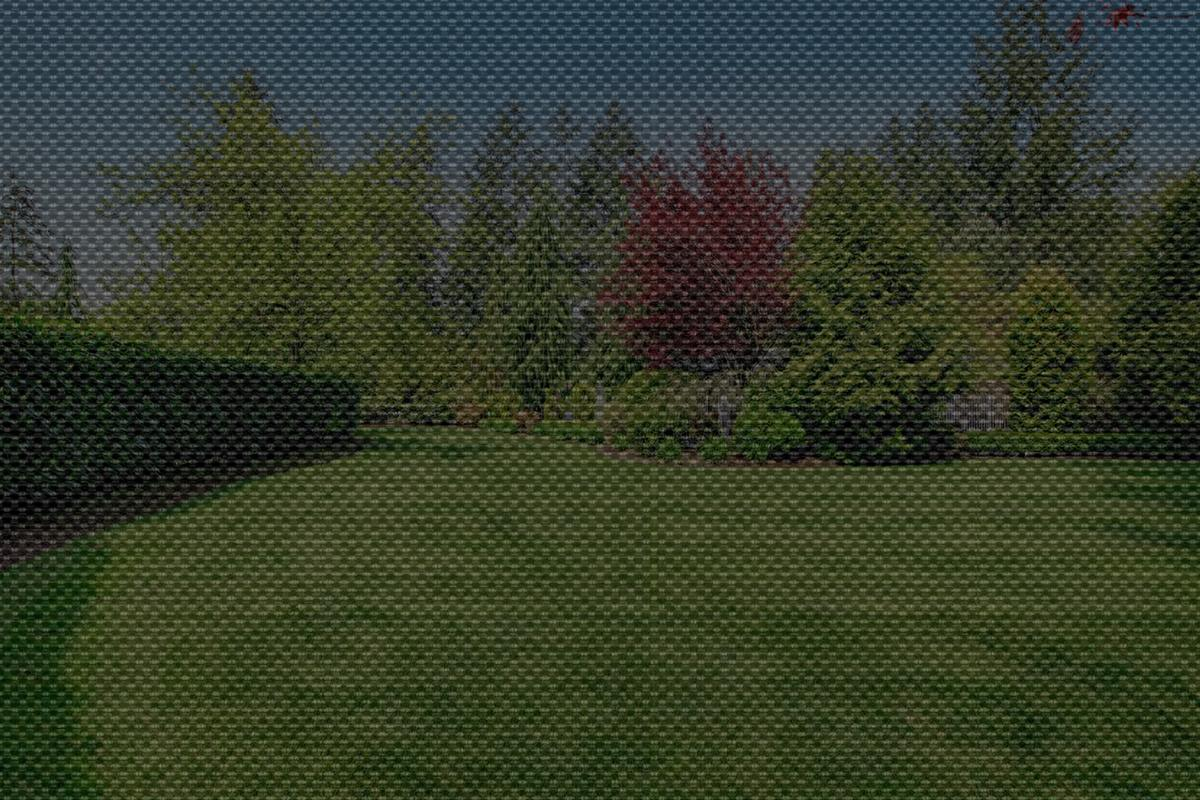 The view of a home lawn through a solar shade with 10% openness for comparison
