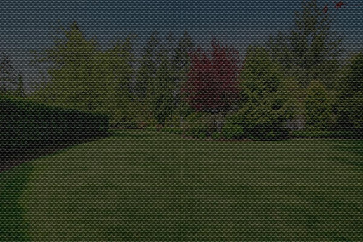 The view of a home lawn through a solar shade with 5% openness for comparison